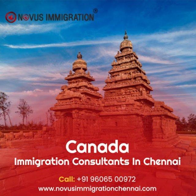 ICCRC Registered Consultants in Chennai, Novus Immigration Chennai