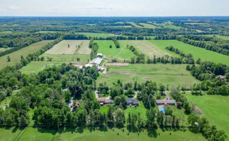 96 Acre Horse Farm for Sale