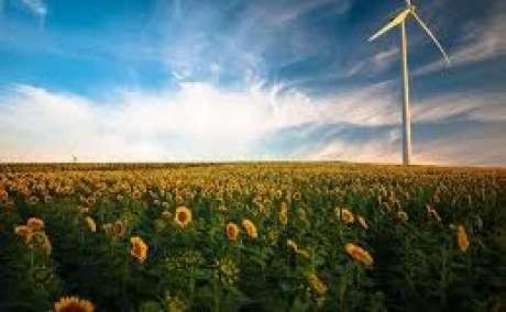 Need renewable energy jobs